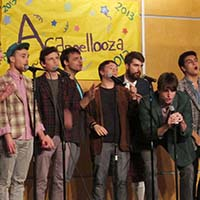 Photo of Macalester a cappella group the Trads singing.