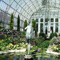 Photo of the interior of the Como Zoo Conservatory