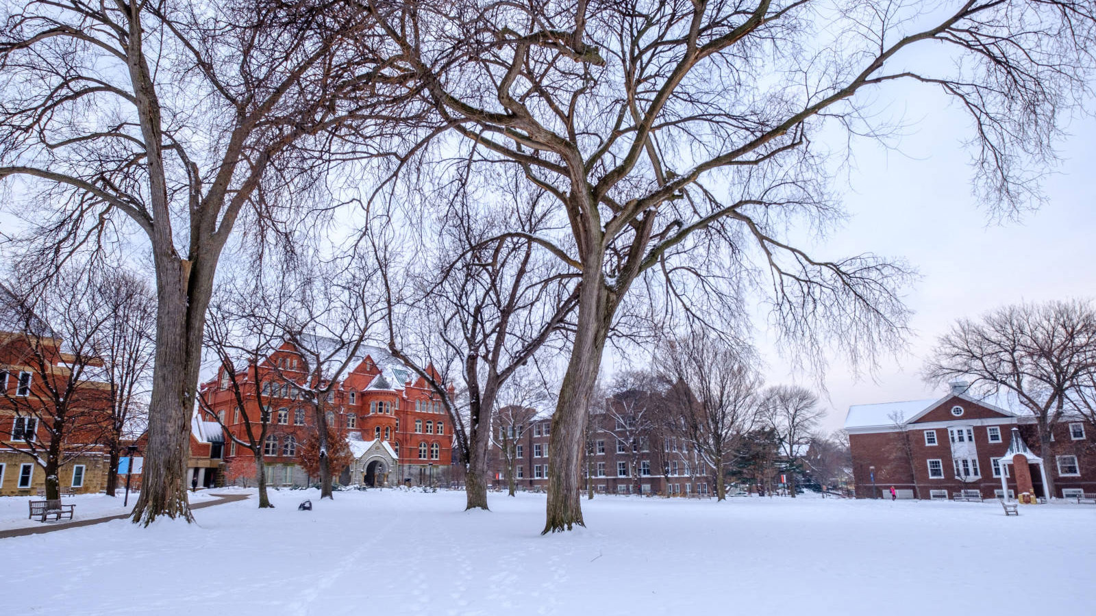 Macalester's Great Lawn covered in snow.