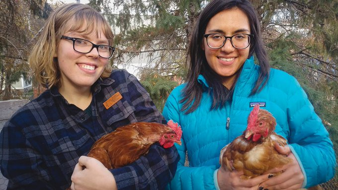 Photo of two students holding chickens.