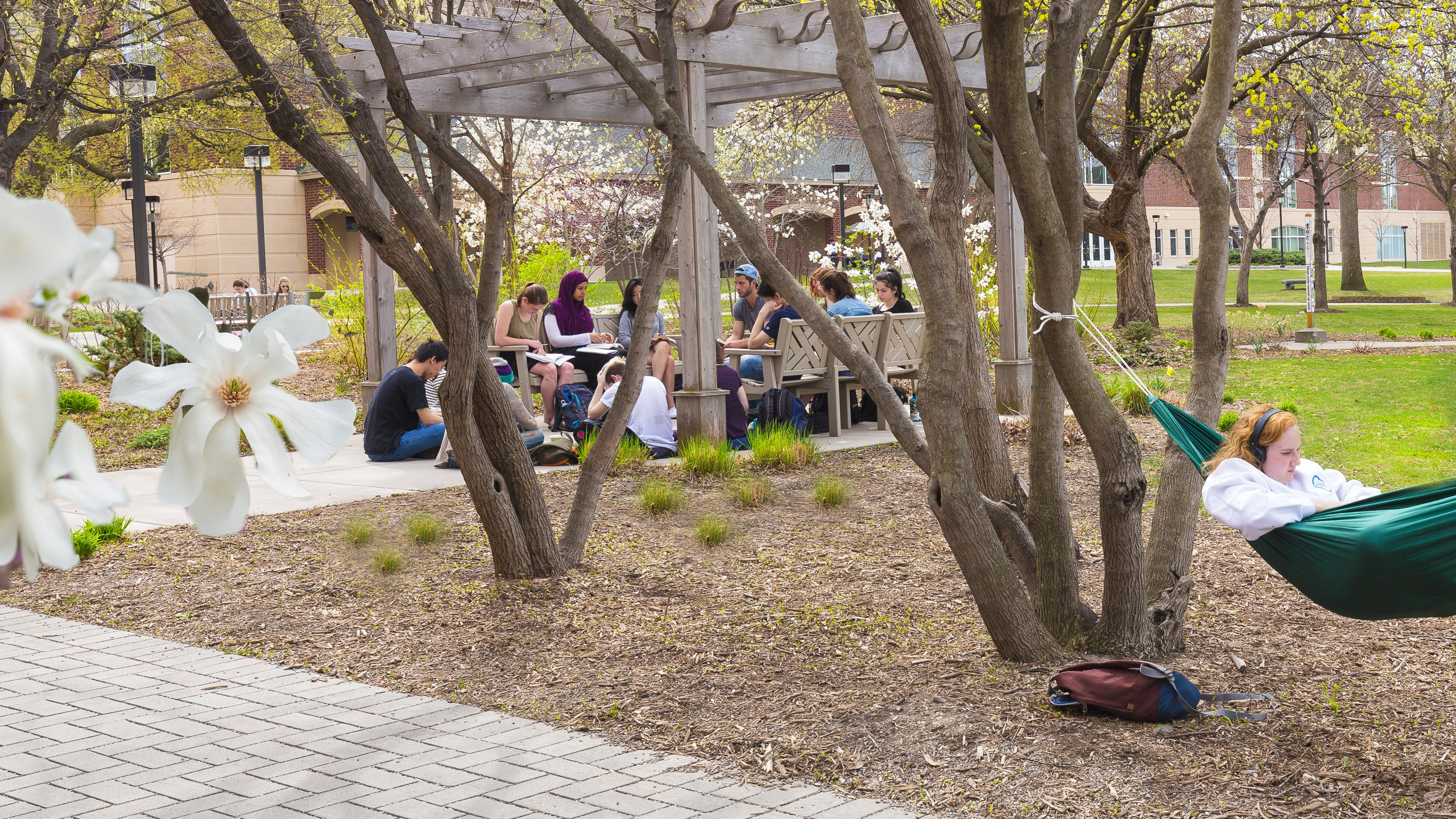 Students gathering on campus in springtime.