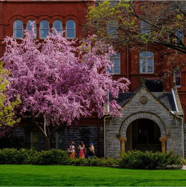 Photo of Macalester campus