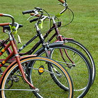 Photo of three bikes