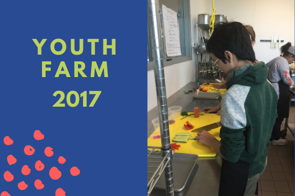 "Teen staff at Youth Farm took part in a hands-on culinary learning experience alongside Macalester students as part of the Action Fund project ""Facilitating Leadership and Discourse through Culinary Education."""