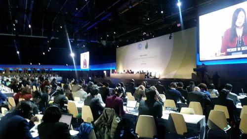 La Loire Plenary Hall during the SBSTA Opening Plenary