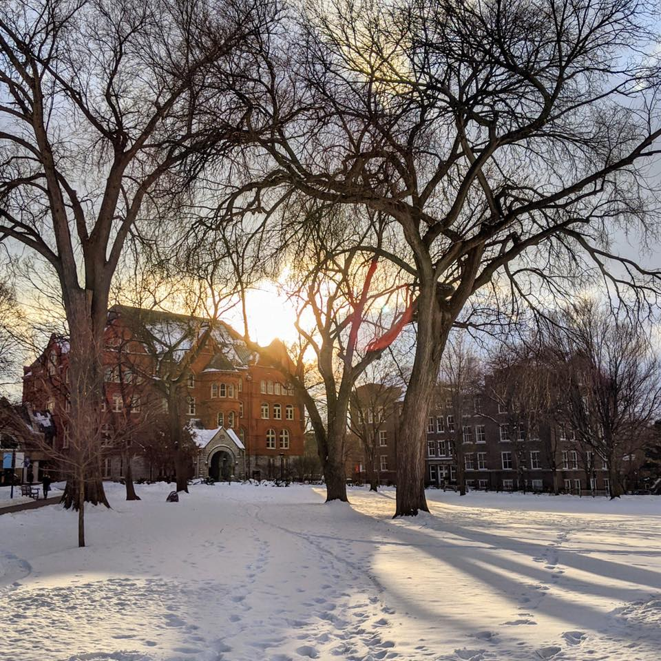 Sun shines on the Macalester campus in winter.