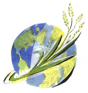 Macalester College Hosts International Roundtable on Globalization, Food, and Agriculture
