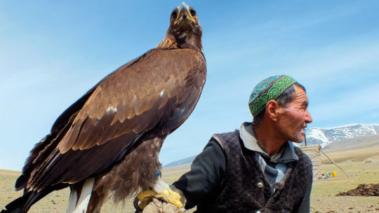 Photo of Mongolian man hunting with an eagle.
