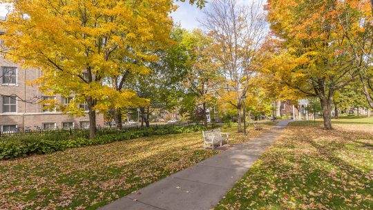 Photo of Macalester campus on an autumn day