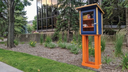 Photo of Macalester's Little Free Pantry