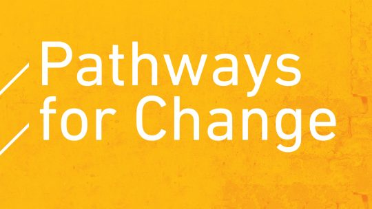 Pathways for Change graphic