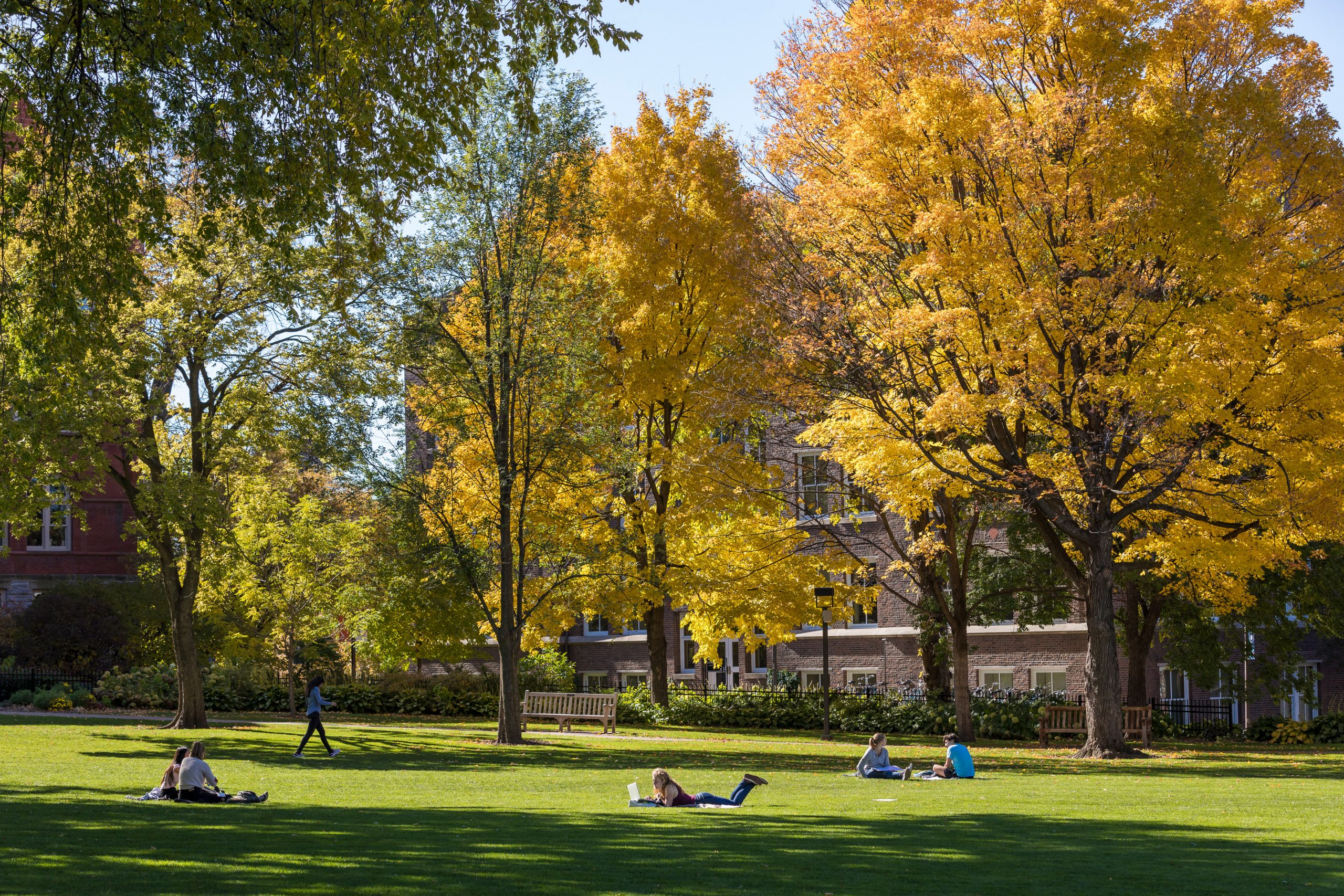 Photo of campus on a fall day