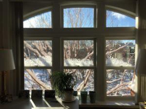 window in English Department